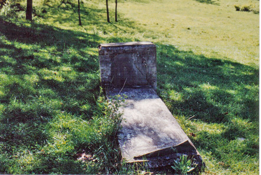 William and Elizabeth Hinchman Grave Site 1993
