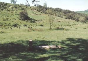 grave 1993, 6 - William and Elizabeth grave site