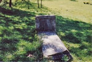 grave 1993 - William and Elizabeth Hinchman Gravesite 3